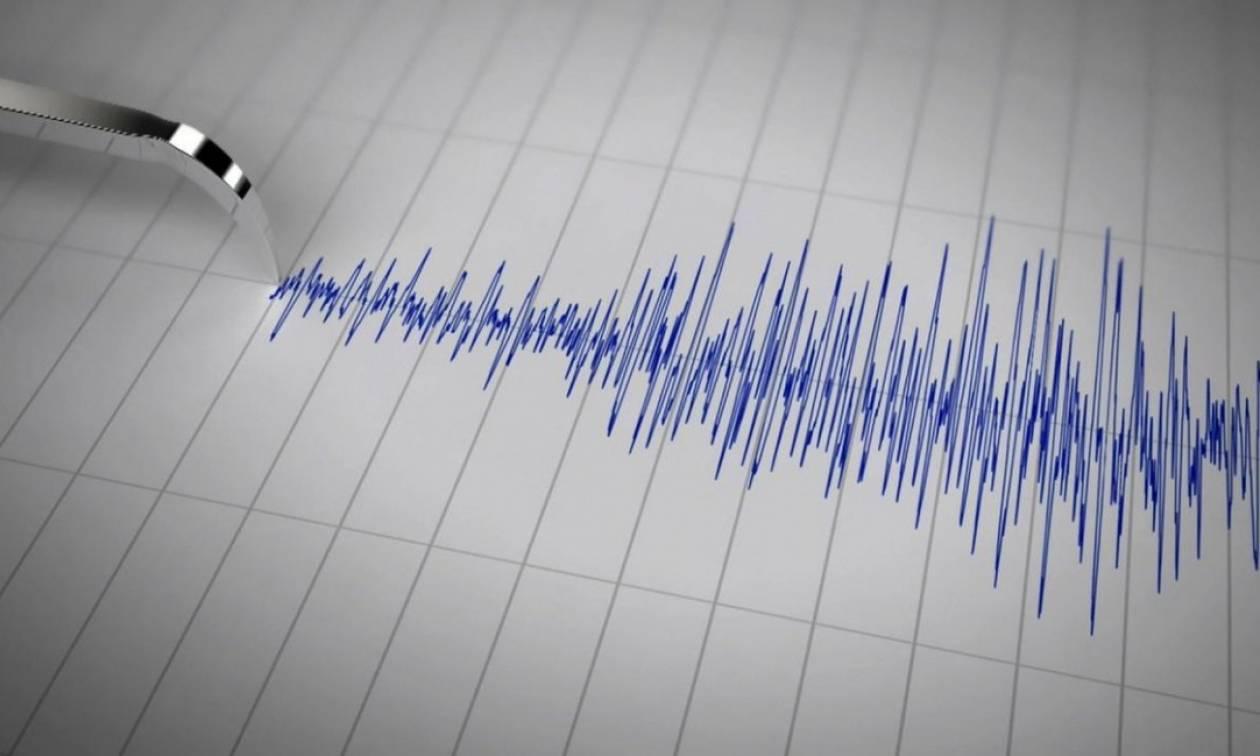Ισχυρός σεισμός 6,5 Ρίχτερ στο νησί Μπουβέ
