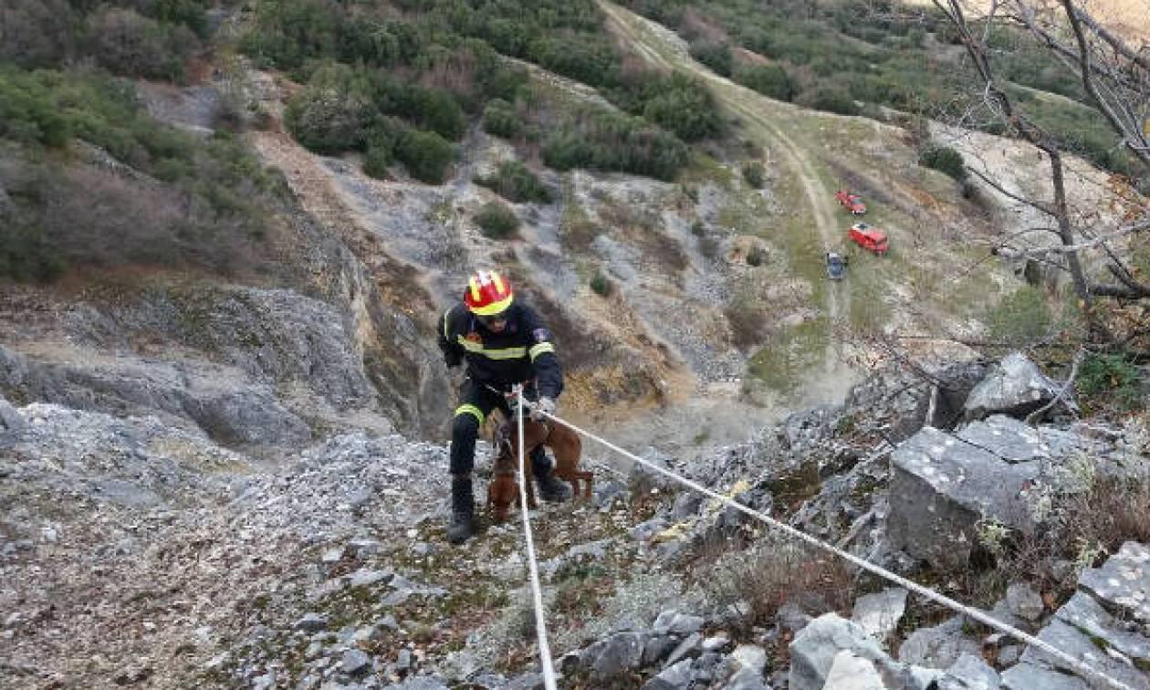 Βίντεο - Κοζάνη: Εντυπωσιακή διάσωση σκύλου από την πυροσβεστική