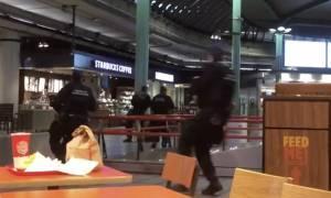 Τρόμος στο αεροδρόμιο του Άμστερνταμ: Γνωστός στις Αρχές ο δράστης της επίθεσης (Vid)