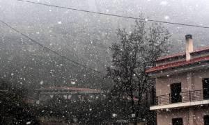 Καιρός ΤΩΡΑ: Χιονίζει στο Πήλιο - Στα λευκά το χιονοδρομικό κέντρο