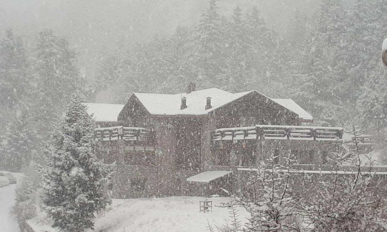 Καιρός: Ο χιονιάς «σκέπασε» την Ελλάδα - Δείτε LIVE πού χιονίζει - Προσοχή τις επόμενες ώρες (pics)