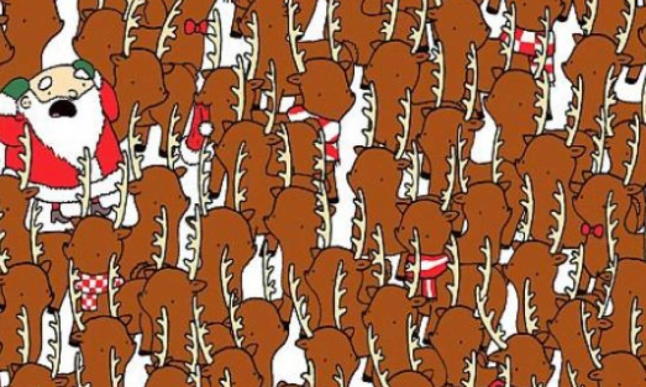 Μπορείς να εντοπίσεις την αρκούδα μέσα στο πλήθος; (video)