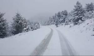 Καιρός: Προσοχή! Μόνο με αλυσίδες η κίνηση σε ορεινές περιοχές της Αιτωλοακαρνανίας