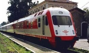 Τρένο που εκτελούσε το δρομολόγιο Αθήνα – Θεσσαλονίκη πάτησε αγελάδες (Σκληρές εικόνες)