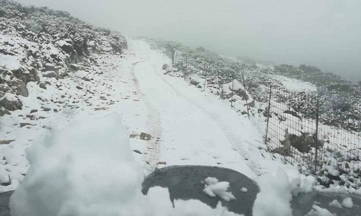 Ο χιονιάς «χτύπησε» την Ελλάδα: Σφοδρές χιονοπτώσεις - «Μάχη» για να κρατηθούν ανοιχτοί οι δρόμοι