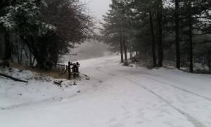 Καιρός: Νέα επιδείνωση με χιόνια, τσουχτερό κρύο και θυελλώδεις ανέμους