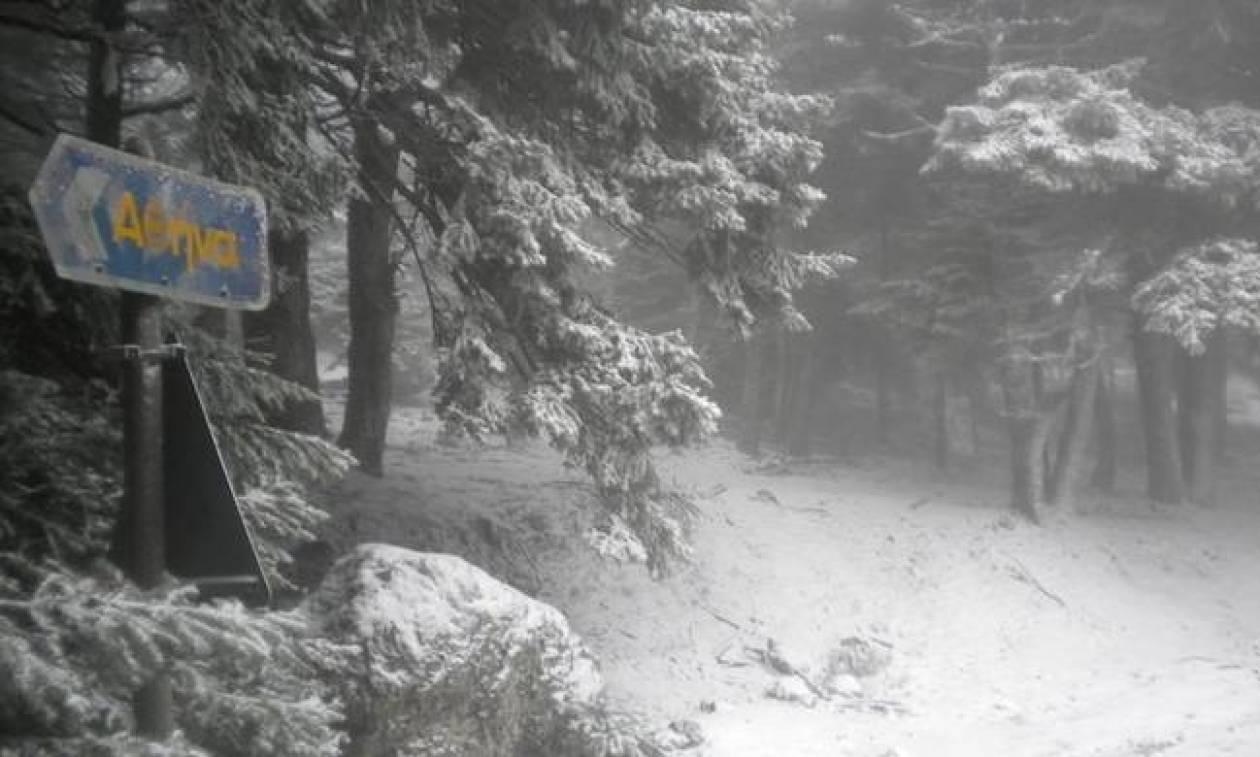 Καιρός ΤΩΡΑ: Σφοδρή χιονόπτωση στην Πάρνηθα - Δείτε LIVE εικόνα