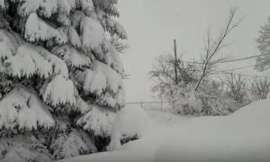 Πενσυλβάνια: Το χιόνι «κατάπιε» μια ολόκληρη πόλη - Δείτε το βίντεο!