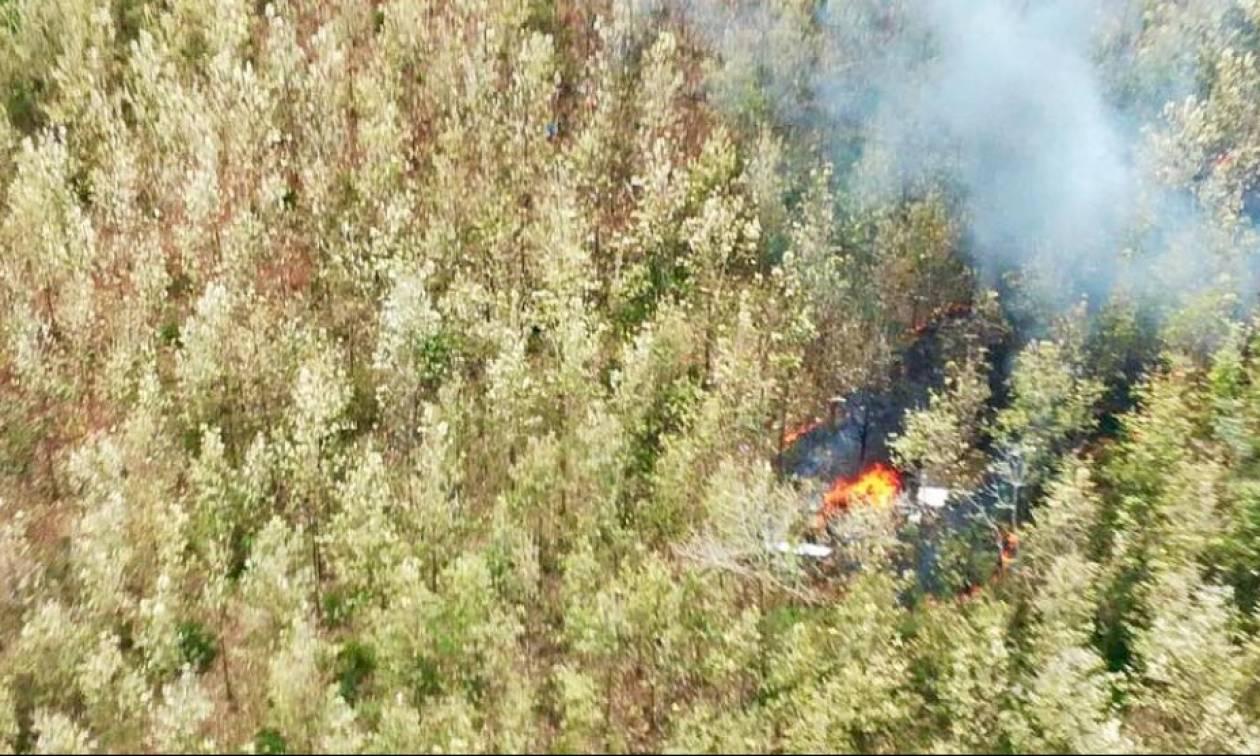 Τραγωδία στην Κόστα Ρίκα: Συνετρίβη αεροσκάφος σε ορεινή περιοχή – Τουλάχιστον 12 νεκροί (Pics)