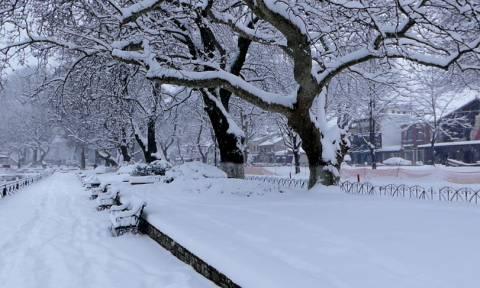 ΕΚΤΑΚΤΟ δελτίο επιδείνωσης καιρού: Προσοχή! Έρχεται σε λίγες ώρες νέος χιονιάς – Πού θα σαρώσει
