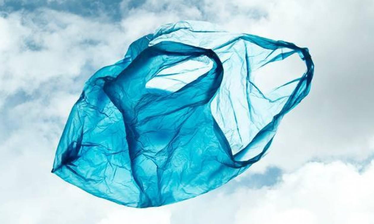 Σκόπελος: Χαμός μεταξύ ψαρά και ελεγκτών για τις πλαστικές σακούλες