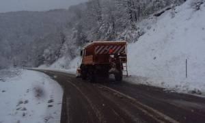Τουρίστες εγκλωβίστηκαν στην παλιά εθνική οδό Ιωαννίνων-Τρικάλων