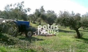 Θλίψη: Νεκρός ο Γιώργος Καλούδης ενώ μάζευε ελιές