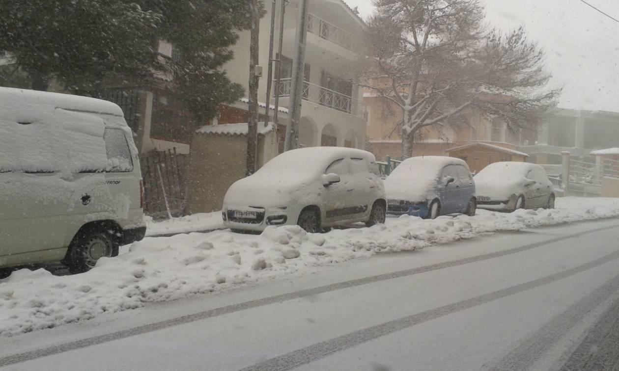 Καιρός Live: Δείτε τώρα ζωντανά πού χιονίζει