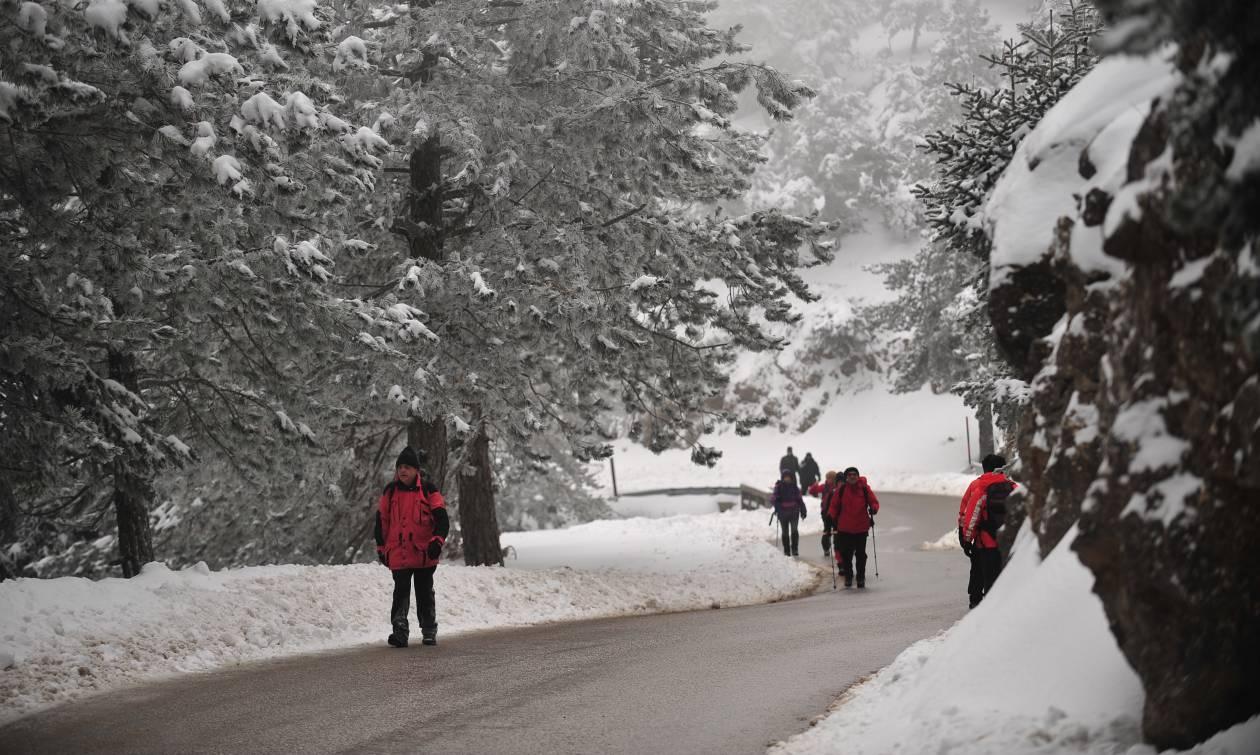 Καιρός Τώρα: Χιονίζει στην Πάρνηθα - Δείτε Live εικόνα