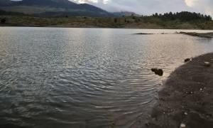Ειρήνη Λαγούδη: Αυτή είναι η 44χρονη μητέρα που βρέθηκε άγρια δολοφονημένη στο Αγρίνιο (pic)