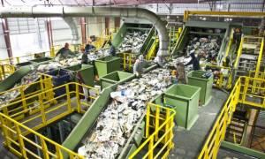 На Кипре в мусорном пакете обнаружено тело младенца