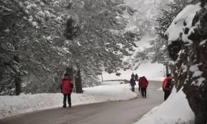 Κακοκαιρία: Ο «Θησέας θα φέρει χιόνια και στην Αττική - Σε ποιες περιοχές θα χιονίσει