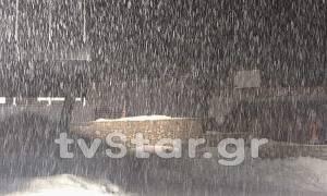 Καιρός: Έντονη χιονόπτωση στον Παρνασσό (vid)