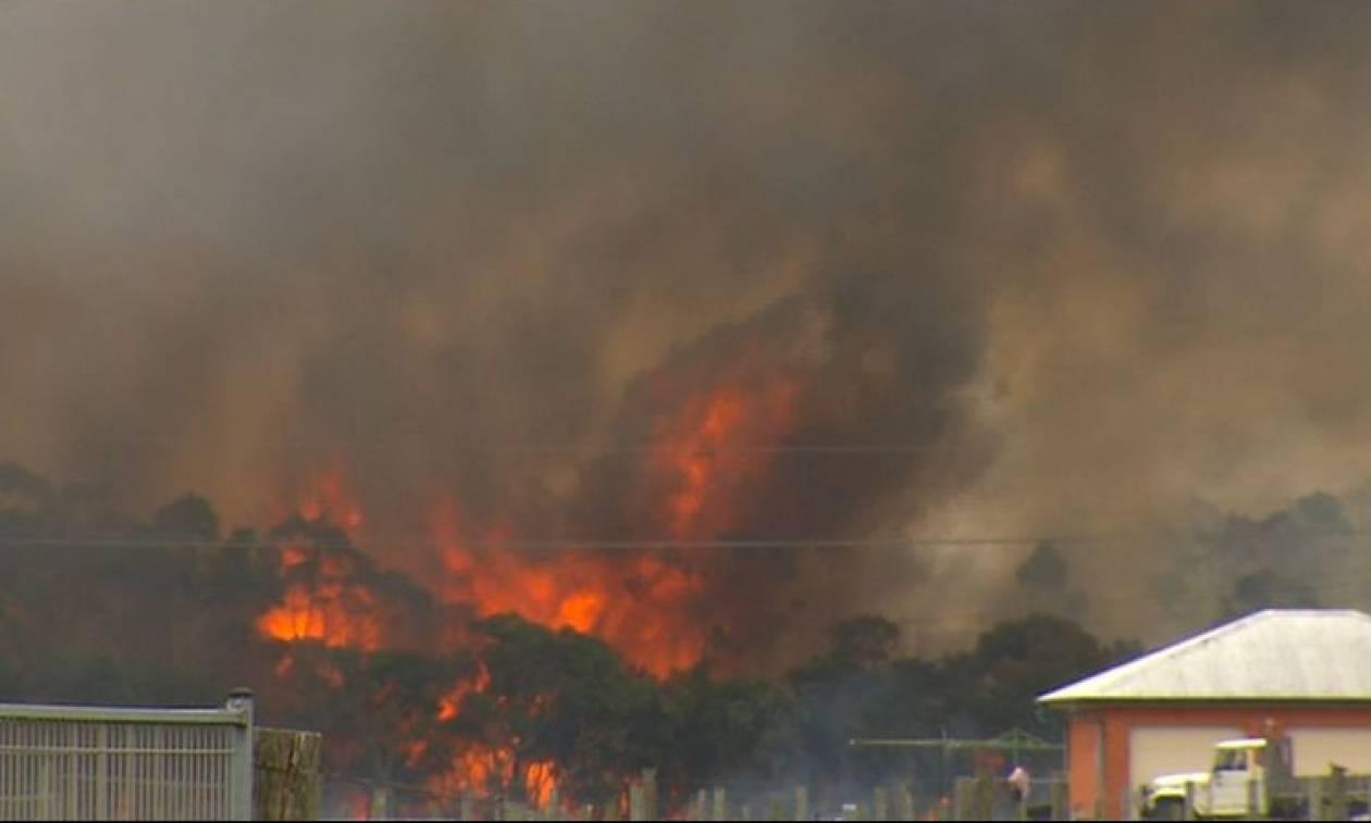 Αυστραλία: Έκλεισε το αεροδρόμιο του Νιούκαστλ εξαιτίας των πυρκαγιών (vids)