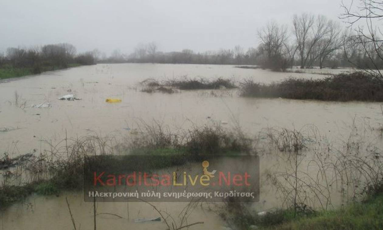 Κακοκαιρία - Καρδίτσα: Εκκένωση οικισμού λόγω υπερχείλισης ποταμού (vid)