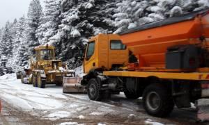 Ο «Θησέας» σφυροκοπάει τα Τρίκαλα – Στο ένα μέτρο έφτασε το χιόνι