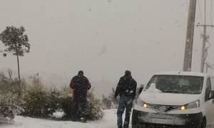 Κακοκαιρία: Αίτημα να τεθούν σε κατάσταση έκτακτης ανάγκης περιοχές της Θεσσαλίας