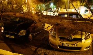 Καιρός ΤΩΡΑ: Προβλήματα σε όλη τη χώρα από τους θυελλώδεις ανέμους (pics&vid)