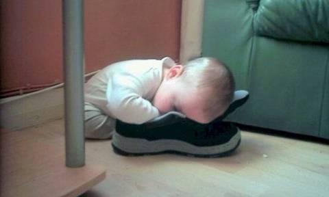 Πιτσιρίκια κοιμούνται στα πιο απίθανα σημεία - Δείτε τις φωτογραφίες
