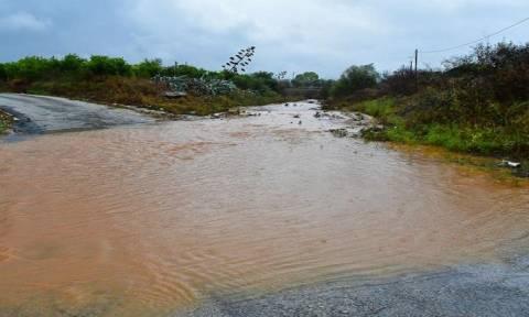 Непогода и ливневые дожди оставили жителей Пафоса без электричества
