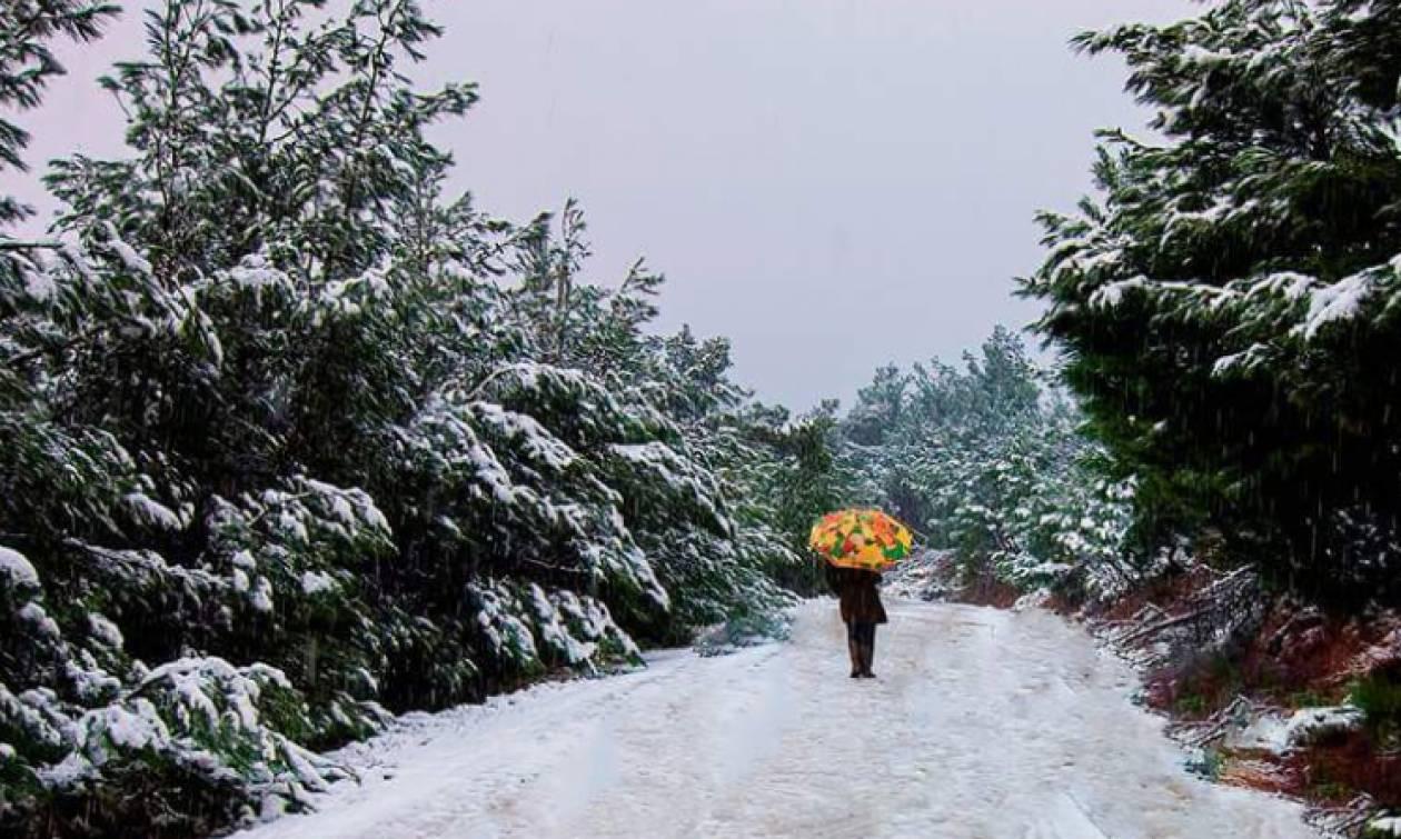 Καιρός: Πυκνό χιόνι στη Χίο