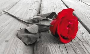 Στο πένθος η Ρόδος: Θρήνος για τον χαμό 22χρονου