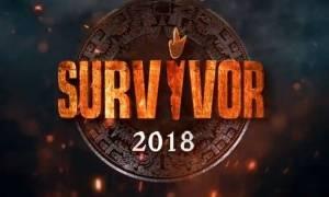 Survivor 2: Αυτά τα χρήματα παίρνουν Διάσημοι και Μαχητές