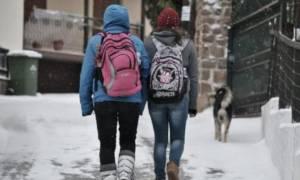 Καιρός - Φλώρινα: Αργότερα ξεκινούν τα μαθήματα την Τετάρτη (24/1) λόγω παγετού