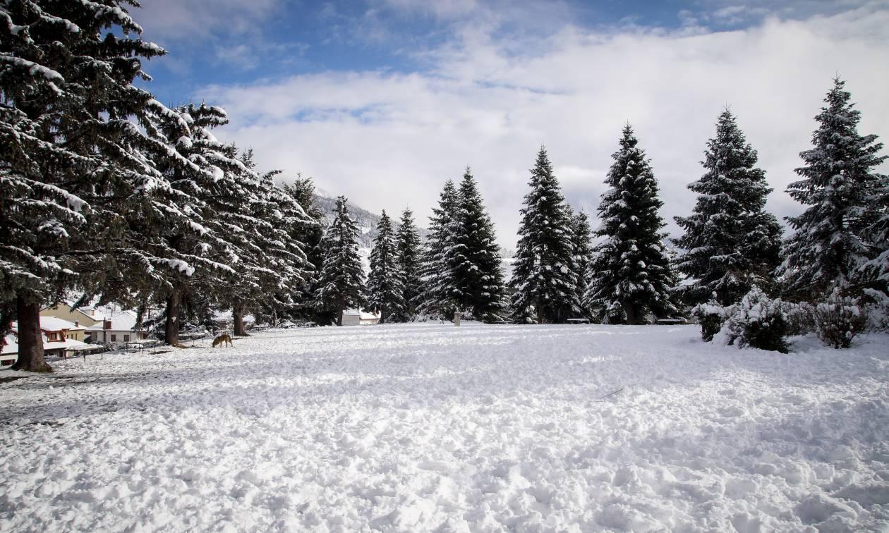 Καιρός ΤΩΡΑ: Κύμα ψύχους «σαρώνει» τη χώρα - Πού θα χιονίσει τις επόμενες ώρες (pics&vids)