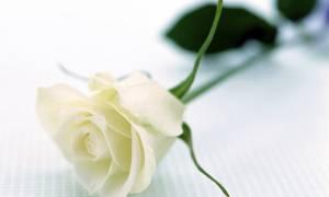 Πάτρα: Πέθανε ο γιατρός Γιώργος Τσατσάνης