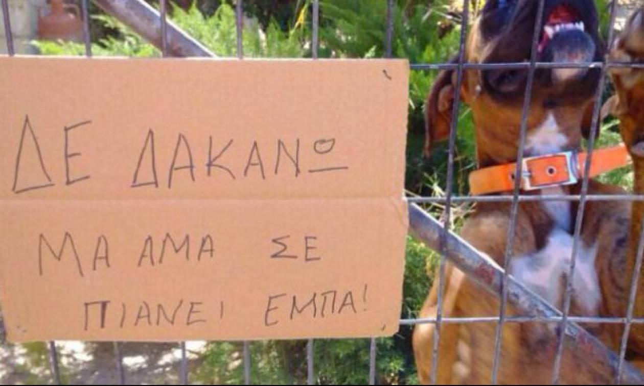 Οι 10 πιο αστείες πινακίδες της Κρήτης που θα σας κουζουλάνουν! (pics)