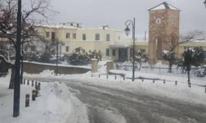Καιρός: Στα λευκά «ντύθηκαν» τα Ανώγεια και οι ορεινές περιοχές της Κρήτης (pics)