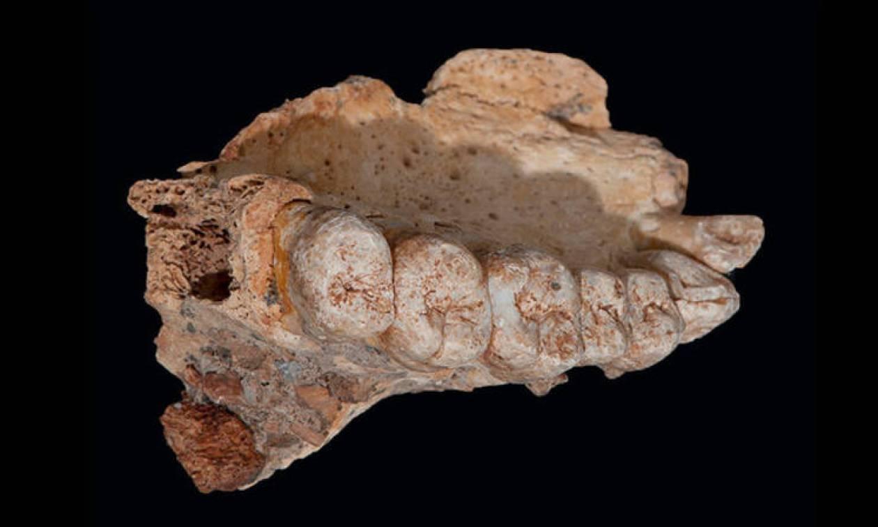 Εντοπίστηκε ο αρχαιότερος Homo Sapiens εκτός Αφρικής- Ανατροπή στην επιστημονική κοινότητα