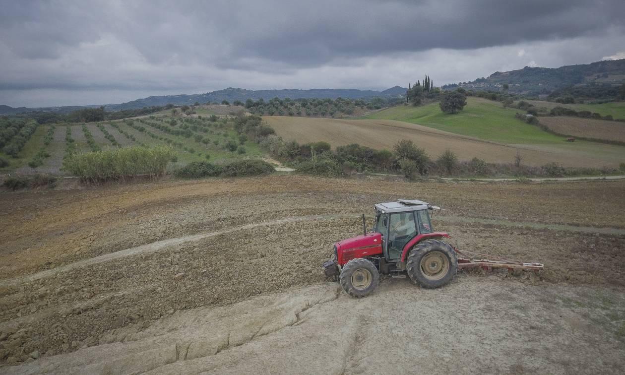 Μυστήριο στη Μεσσηνία: «Πάγωσε» με αυτό που ανακάλυψε μέσα στο χωράφι του!