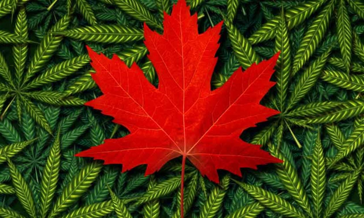 Καναδάς: Ξόδεψαν σχεδόν τέσσερα δισεκ. ευρώ για να αγοράσουν κάνναβη