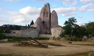 Πανικός σε ζωολογικό κήπο στη Γαλλία: Δραπέτευσαν τουλάχιστον πενήντα μπαμπουίνοι