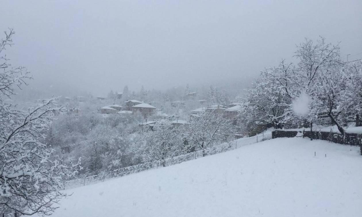Καιρός – Ο Τάσος Αρνιακός προειδοποιεί για νέα ψυχρή εισβολή – Πού και πότε θα χιονίσει