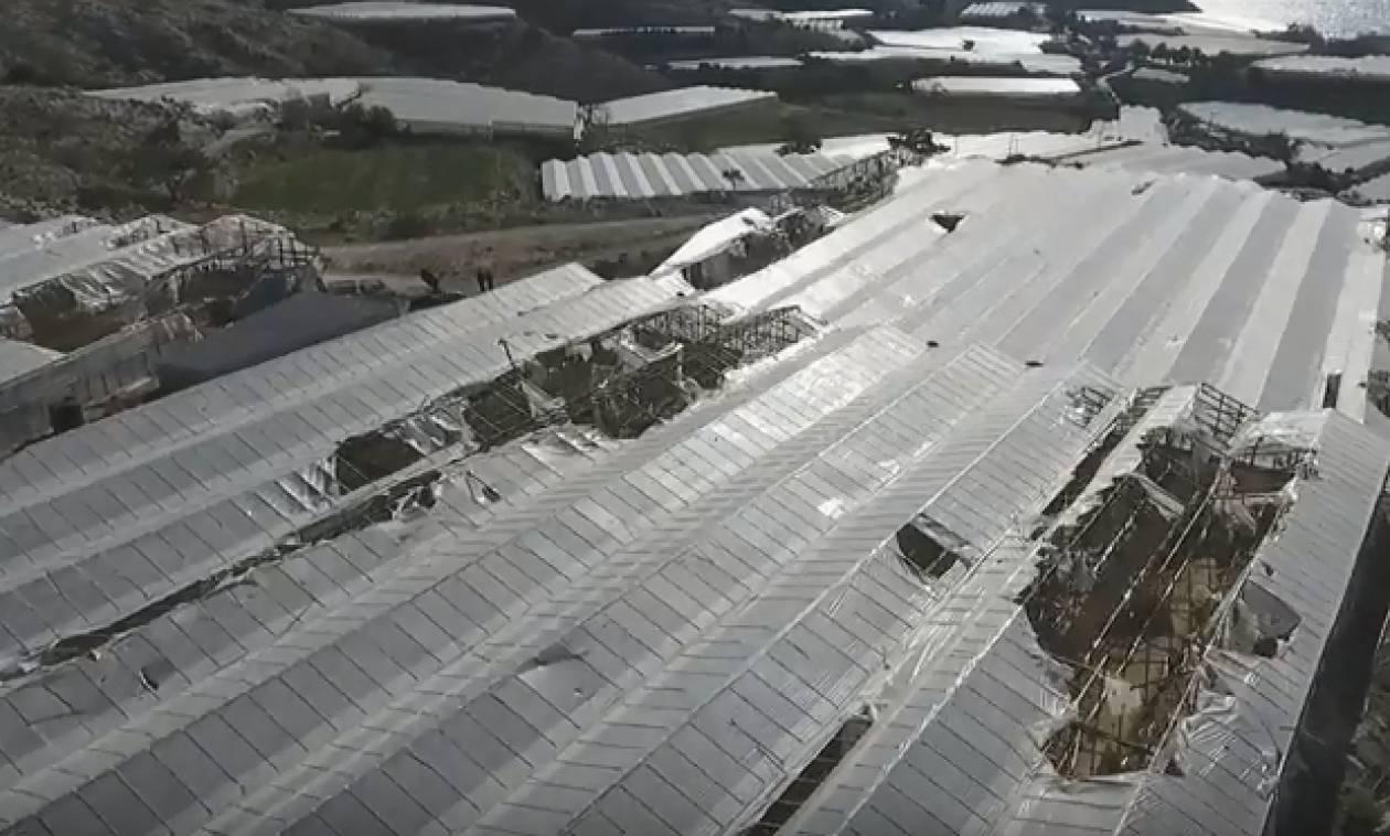 Ιεράπετρα: Εικόνες... Αποκάλυψης πάνω από τις κατεστραμμένες εκτάσεις (vid)