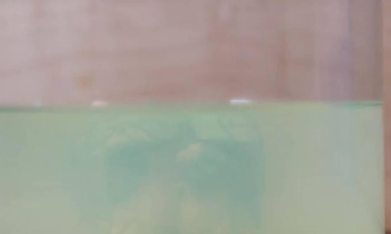 Γέμισε ένα ποτήρι με ασετόν και έριξε μέσα έναν κύβο του Ρούμπικ. Τι ακολούθησε; (video)