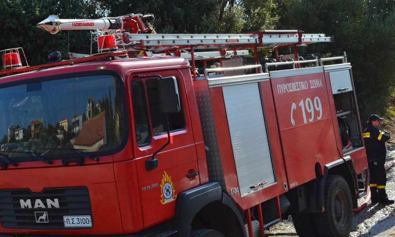 Τρίκαλα: Έπεσε με το αυτοκίνητό του σε χαράδρα