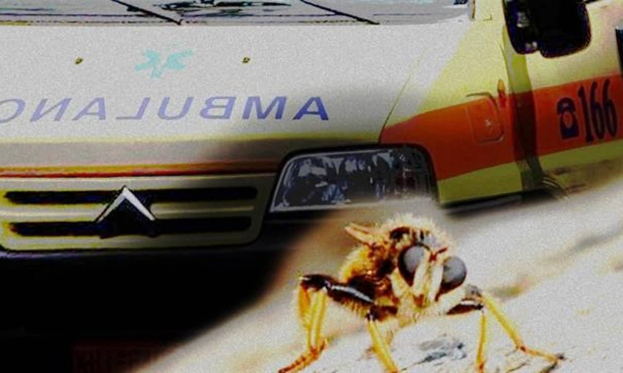 Ηράκλειο: Πέθανε από τσίμπημα μέλισσας μέσα σε λίγα λεπτά