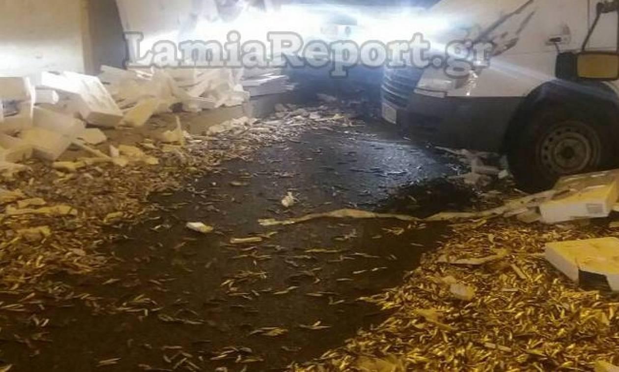 «Πλημμύρισε» από ψάρια η σήραγγα της Στυλίδας (pics)