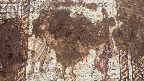Αρχαιολογία: Στο φως σπάνιο μωσαϊκό 1.800 ετών με αρχαιοελληνική επιγραφή στο Ισραήλ (pics&vid)