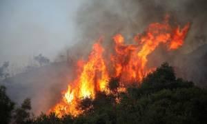 Φωτιά ΤΩΡΑ: Στις φλόγες δύσβατη περιοχή στα Χανιά
